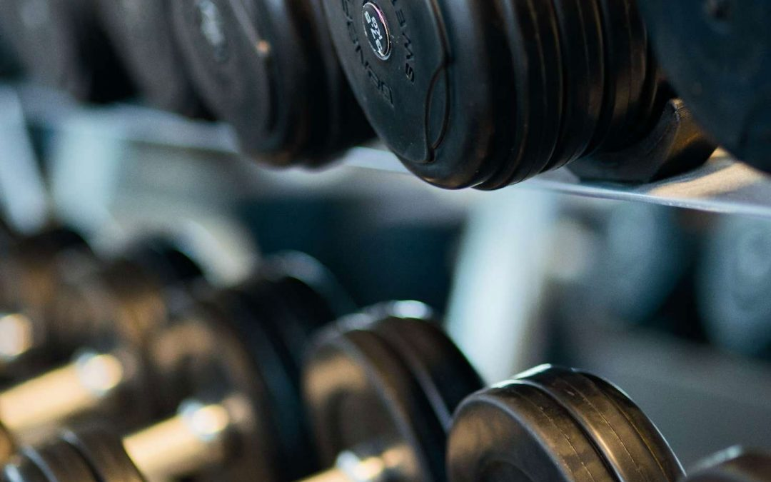 A picture of dumbbells arranged in a row on a standing rack. Photo courtesy of Ferndalehaus Apartments.